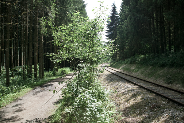 Bahn_Rad