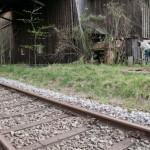 Mayersäge bei Waldkirchen