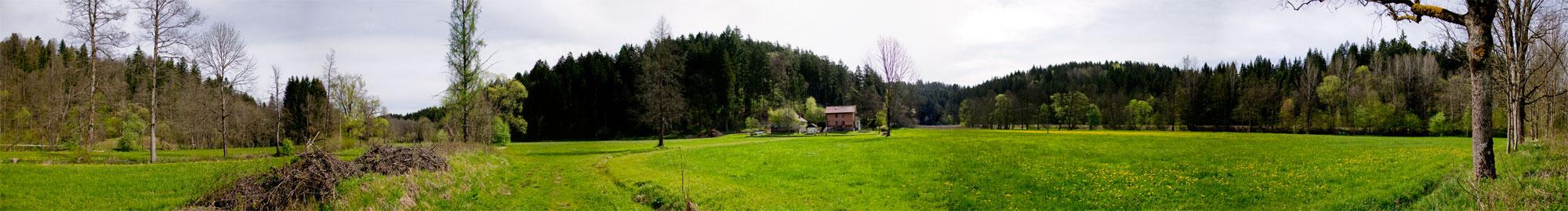 Panorama_Holzhof